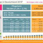 Aktuelle BMGPflegestatistik Deutschland