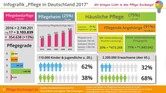 Infografik Pflege in Deutschland 2017