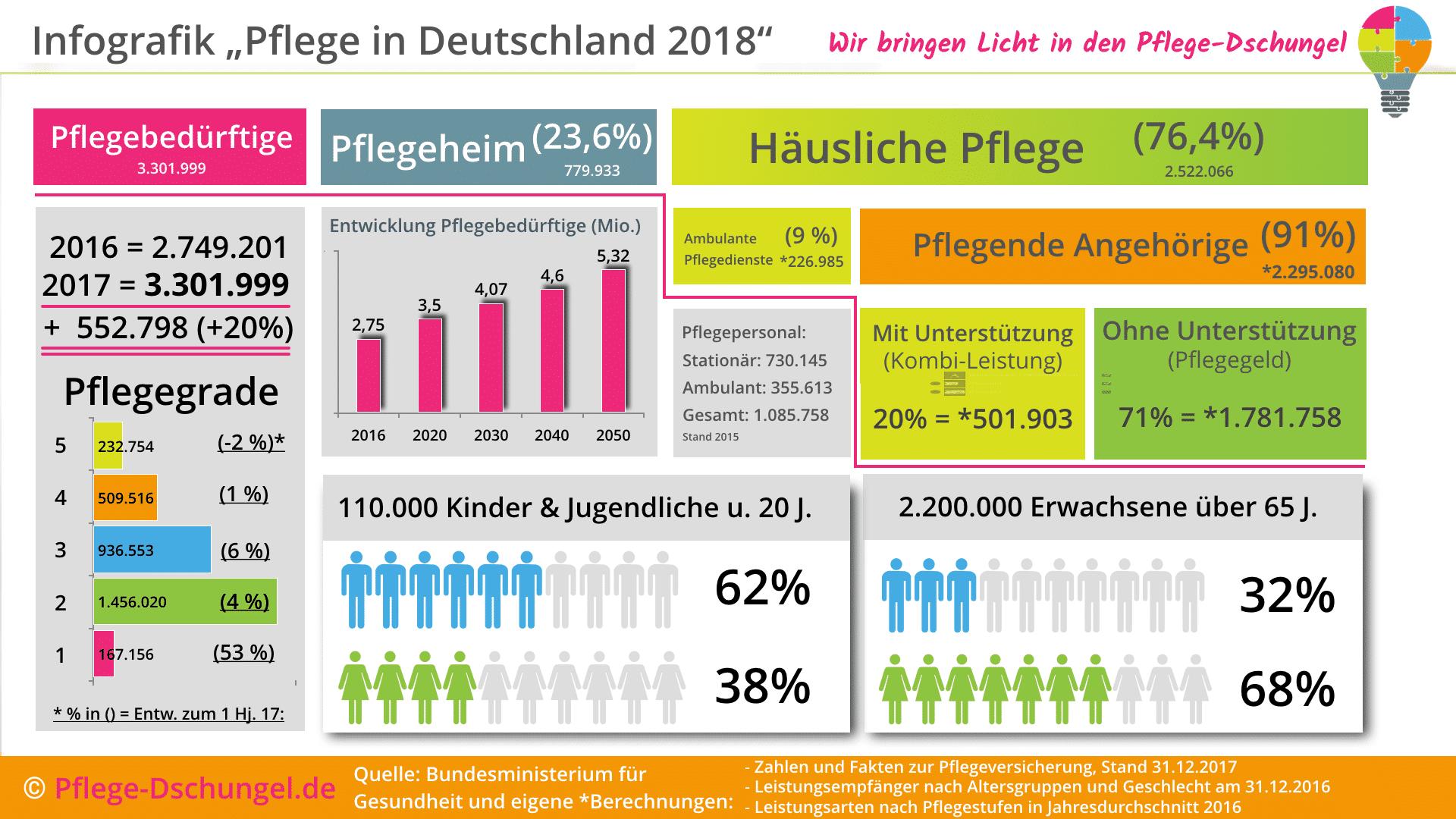 Infografik zur Pflege in Deutschland 2018