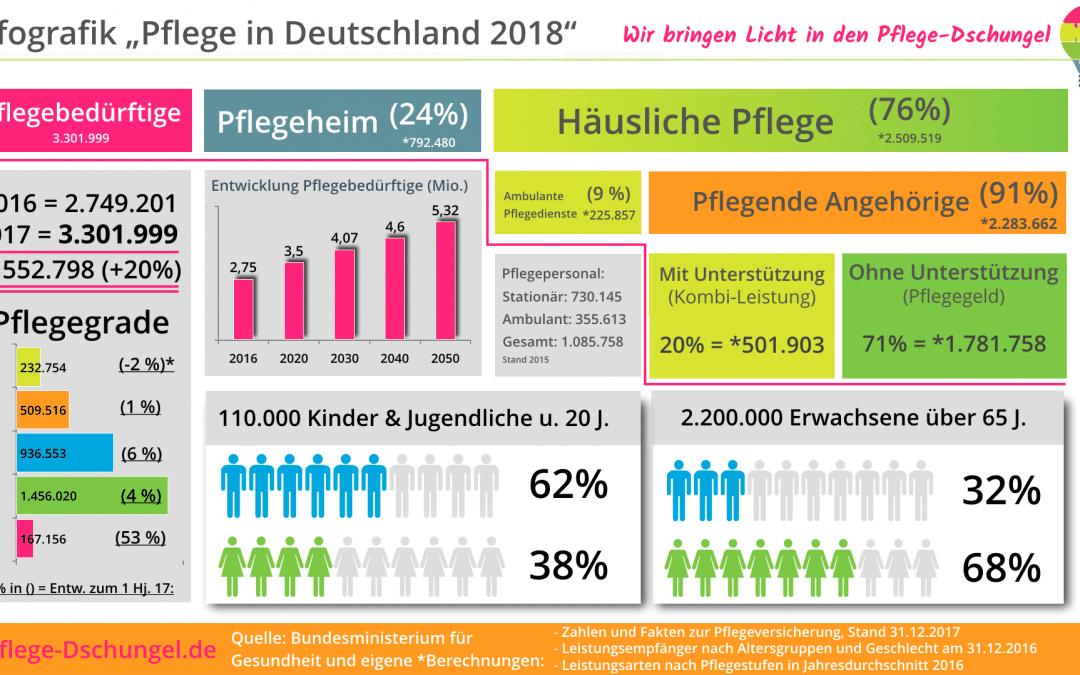 Infografik – Pflege in Deutschland 2018