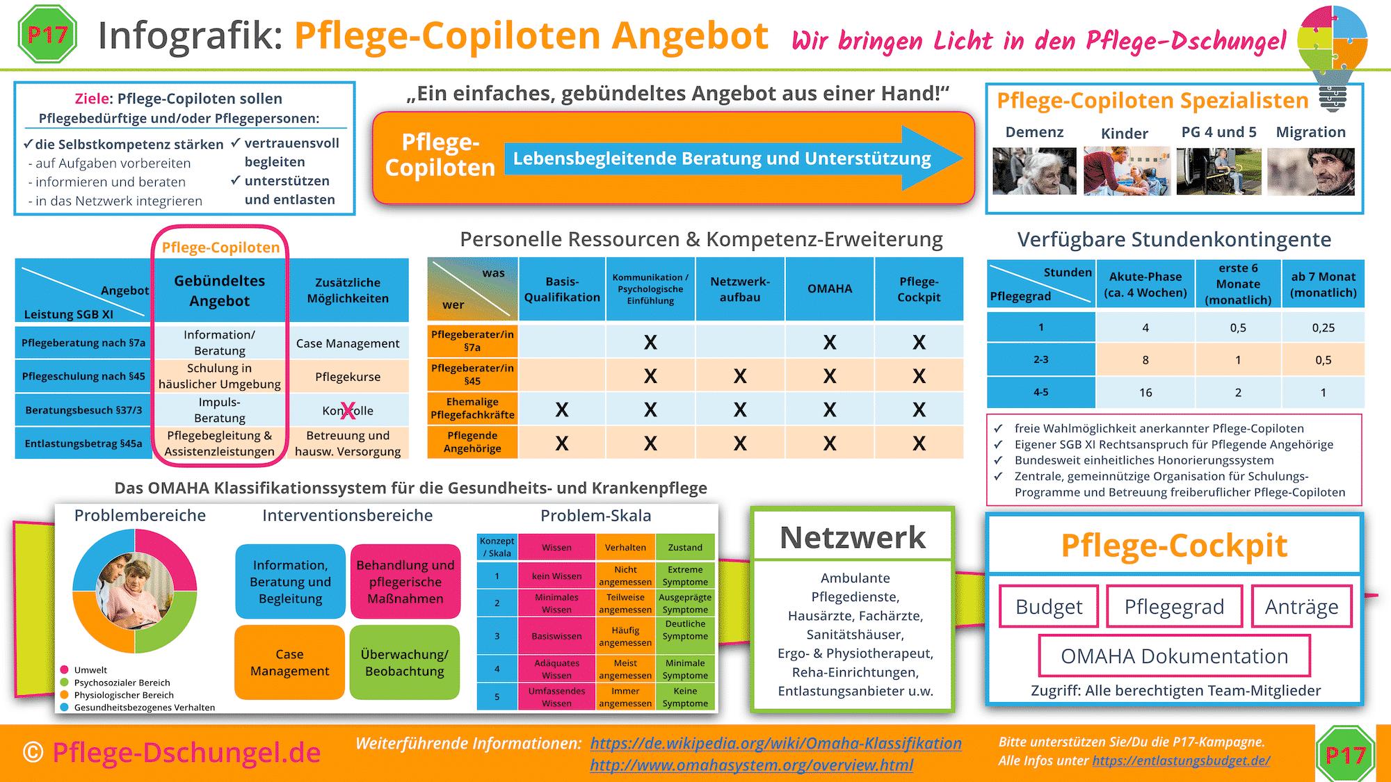 Infografik Pflege-Copilot soll deutschlandweit helfen.