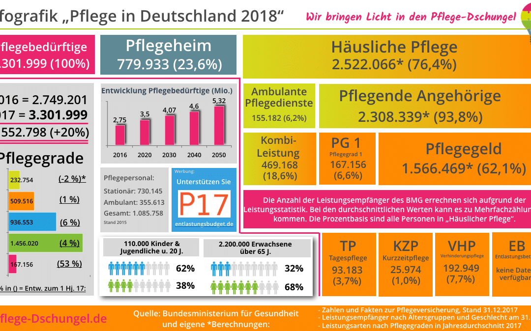 Infografik – Pflege in Deutschland 2018 update