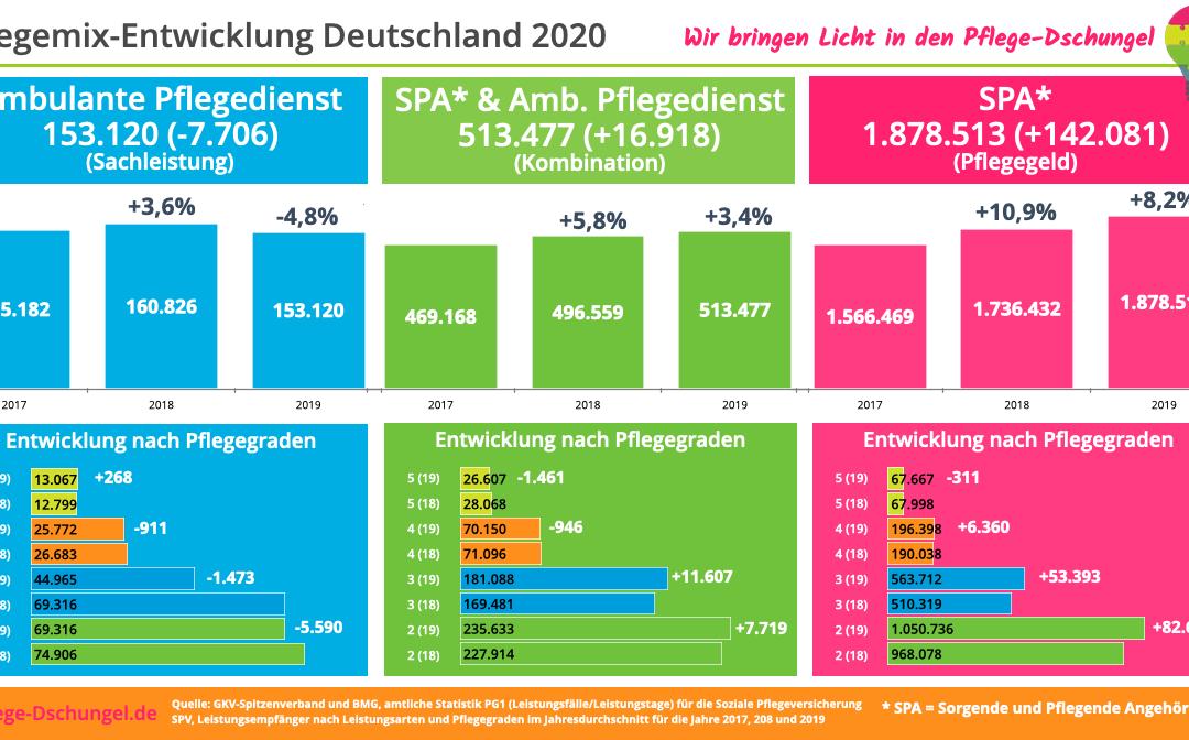 Pflege-Mix in Deutschland 2020