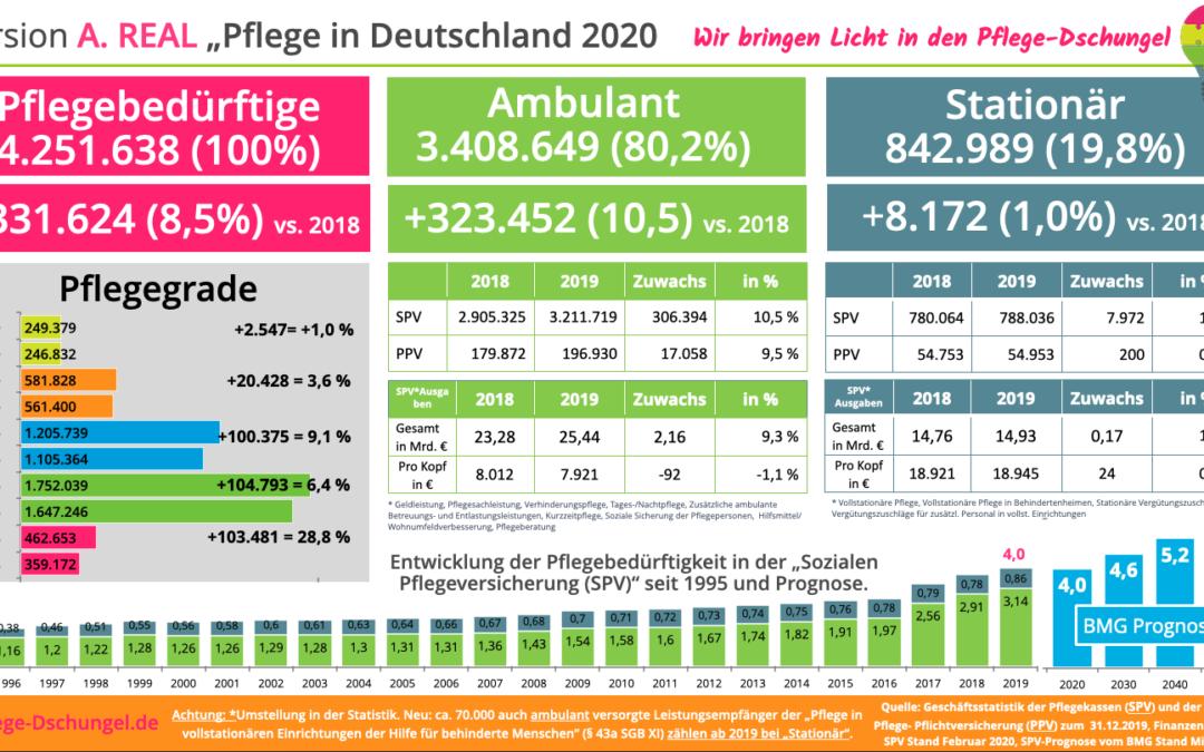 Pflege in Deutschland 2020